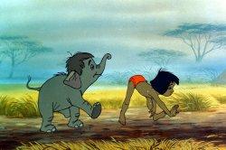 Il libro della giungla dopo 40 anni in prima tv su toon disney