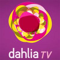 La posizione di Adoc, Sindacati e Federconsumatori-Adusbef sul caso Dahlia Tv