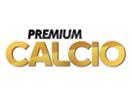 Serie A su Mediaset Premium - I telecronisti della 23a giornata