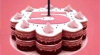 La5 - Un anno di programmazione in rosa
