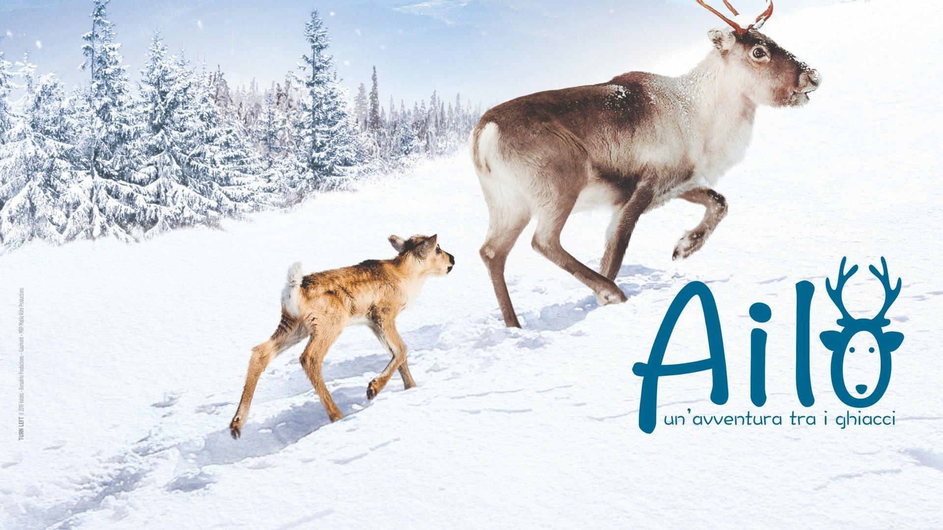 Martedi 8 Dicembre 2020 Sky e Premium Cinema, Ailo