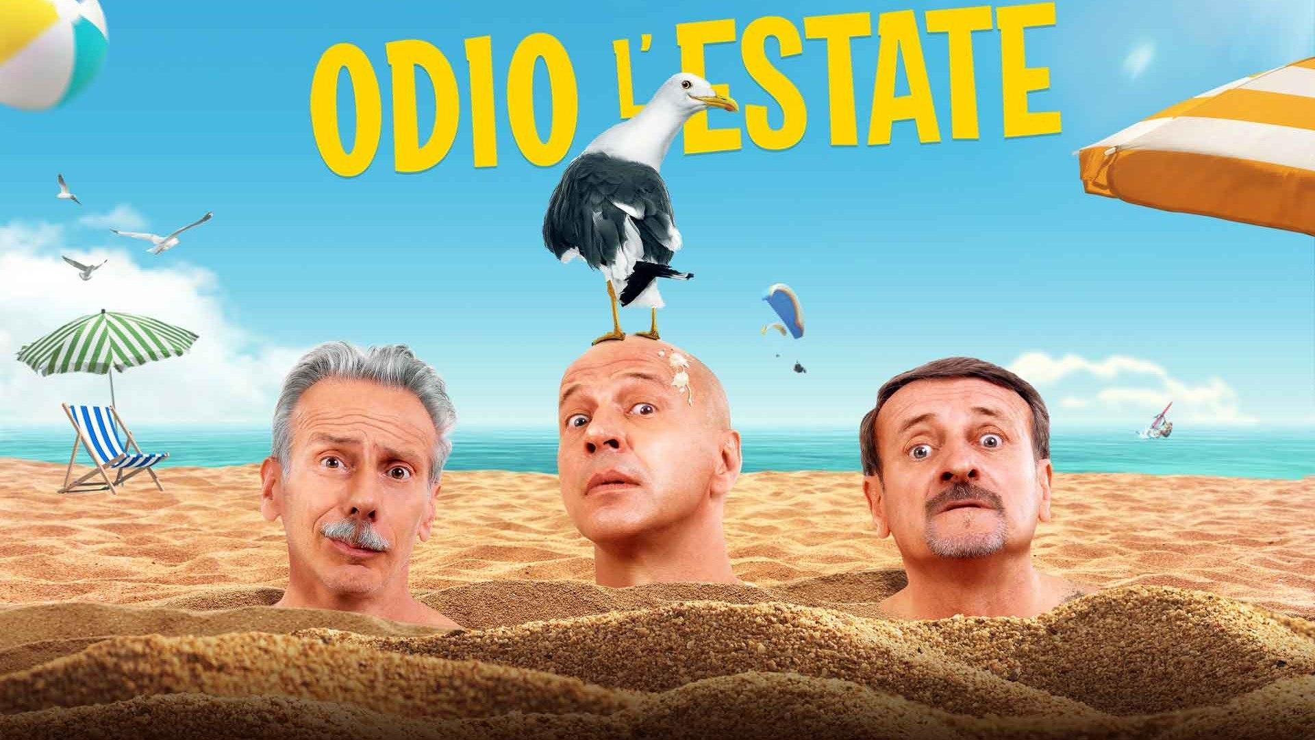 Venerdi 1 Gennaio 2021 Sky e Premium Cinema, Odio l'estate