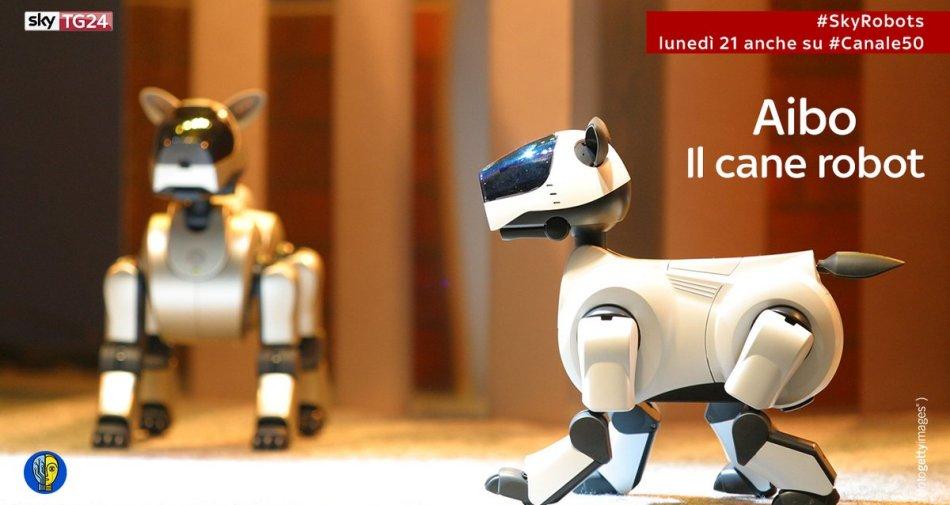 Sky TG24 HD dedica una giornata al tema dei robot e dell'intelligenza artificiale