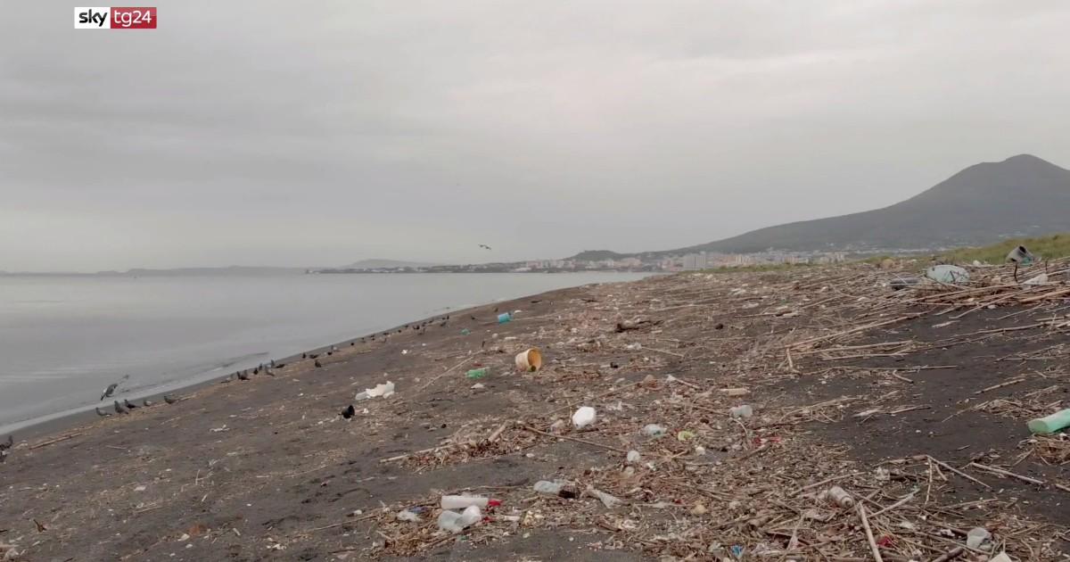 Il santuario, su Sky TG24 per capire gli effetti inquinamento della plastica