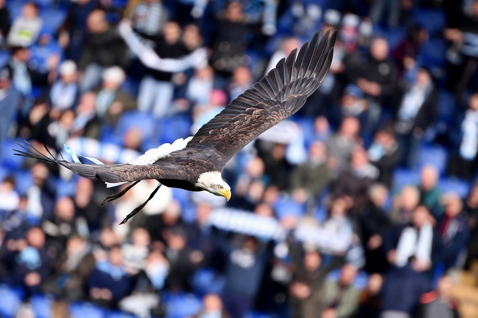 Serie A, stasera Lazio - Hellas Verona (diretta esclusiva DAZN1, Sky 209)