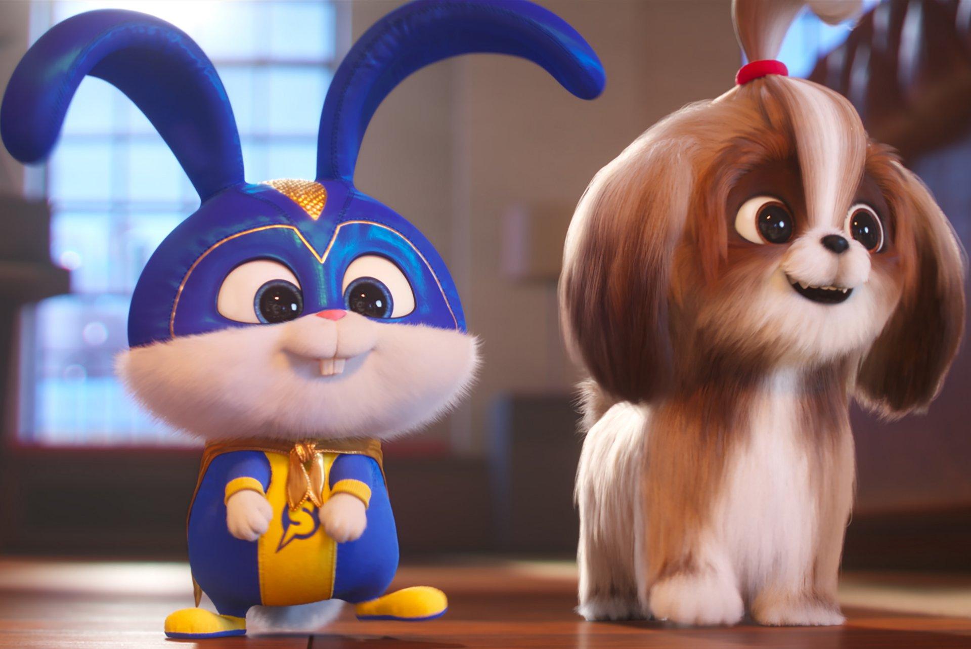 Pets 2 - Vita da animali, il secondo capitolo della saga su Sky Cinema Uno