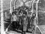 Giornata della Memoria 2013 - Tutti i programmi tv in ricordo dell'Olocausto